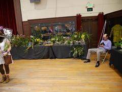Bill Robson's display (cieneguitan) Tags: flora lan bunga orkid okid angrek anggerek