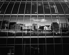 Reflection///Spiegelung (stevefoltinek) Tags: düsseldorf reflection spiegelung gitter medienhafen blackwhite bw schwarz weiss