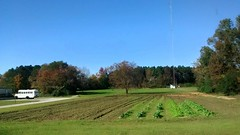 Sunny Day In Fairmont. (dccradio) Tags: autumn trees sky bus tree fall nature garden landscape nc scenic northcarolina sunny natura greenery blueskies fairmont clearskies robesoncounty