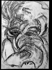 drawing graphite crayon bird face42x29.5cm