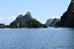 D72_7557 (Tom Ballard Photography) Tags: vietnam halongbay tourboats bayclub 20151118