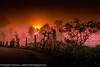 DSC05304-5 (www.GoAndRide.co) Tags: morning light classic mañana fog ruta sunrise cycling bikes ciclismo colnago alto palmas c40 amanacer wymtm lightbro