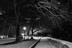 DSC_0961 (orestisvaresis) Tags: winter nikon greece ioannina d5500