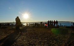2016 Polar Bear Swim Vancouver (phase5pdx) Tags: bear new winter canada cold english vancouver swim buzz bay costume crazy day bc outdoor events year columbia celebration british years polar tradition vancity 2016