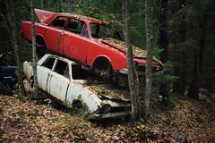 2x Ford Corsair (1963 - 1970) (ukasz Makiewicz) Tags: ford corsair abandoned car cemetery auto autumn forgotten lost graveyard