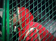 women in cage (press & pleasure - pap) Tags: bangladesh bangladeshi bengali dhaka human