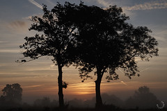 2016_septembre_DSC5754 (brunata61) Tags: paysage levdesoleil brume stouensurmaire sony a58 normandie
