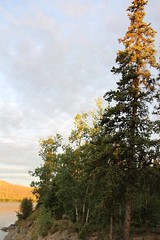 Yukon River Sunrise (demeeschter) Tags: canada yukon territory klondike highway lake mountain scenery landscape nature wildlife fire forest river minto resort bald eagle dawn sunrise