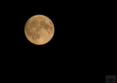 Full-moon (zbma Martin Photography) Tags: moon fullmoon vollmond mond krater planet sonne hell nacht klar night clear
