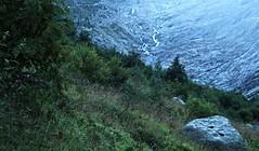 glacier du Trient (bulbocode909) Tags: valais suisse trient glacierdutrient glaciers montagnes nature arbres forts vert rochers