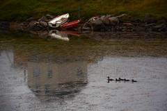 Reflekser ved Rifstangi (Martin Ystenes - hei.cc) Tags: sland iceland nordurland