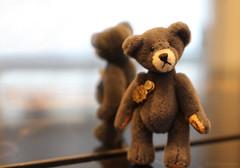 Because Stitches Matters...Macro Mondays_Stitch (Belle Pan's Maze) Tags: macromondays stitch miniature teddy bear toy hermann
