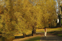 Pensive Autumn (Natali Antonovich) Tags: sweetbrussels brussels belgium belgique belgie natalyahrebionka pensiveautumn autumn hat hats hatisalwaysfashionable landscape nature lifestyle walking walk style romanticism romantic poetessnatalyahrebionka