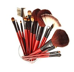 SHANY Professional 13-Piece Cosmetic Brush Set with Pouch, Set of 12 Brushes and 1 Pouch, Red (goodies2get2) Tags: amazoncom bestsellers shany under25