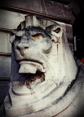 2010-05-20f Scowl ([Ananabanana]) Tags: nottingham nottinghamshire notts nikon d40 gimp photoscape nikon1855mmkitlens 1855mm nikon1855mm 1855 nikonafsdx1855mm nikkorafsdx1855mm nikkor nikkor1855mm nikonkitlens councilhouse oldmarketsquare nikonistas nikonista thomascecilhowitt square statue lion josephelse symbol artdeco leftlion
