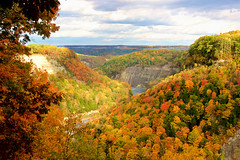 Letchworth 2 (Sarah Sonny) Tags: fall autumn leaves colors landscape upstateny fallcolors falltrees gorge hills colorful