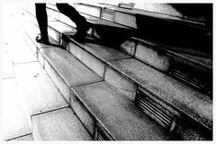 Stufen.Wechsel. (HansEckart) Tags: stufen kontrast bw highcontrast sw linien lines contrast