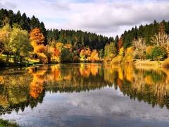Spiegelung am Leinecksee (almresi1) Tags: lake see leinecksee welzheim alfdorf wood wald spiegelung mirroring colours herbst autumn