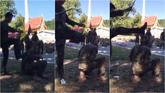 วินธัยแจงดำเนินการสอบสวนทันที ปมคลิปครูฝึกทหารมือหวด-กระทืบ