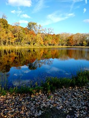 Fall at Presque Isle water works (dalesins) Tags: presqueislestatepark waterworks autumn autumnleaves fallcolors pond reflections cellphonecamera cellphonelenses cellphonefilters nexus6p huaweinexus6p manualcameraapp