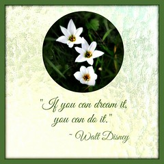"""If you can dream it, you can do it."" (martian cat) Tags: rainlily lily martiancatinjapan allrightsreserved tinyflowers allrightsreserved flower nature martiancatinjapan martiancatinjapan allrightsreserved allrightsreserved martiancatinjapan martiancat motivational motivationalposter creativity lilies"