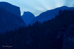 Half Dome Sunrise (priscellie) Tags: yosemite nationalpark california landscape halfdome sunrise yosemitenationalpark