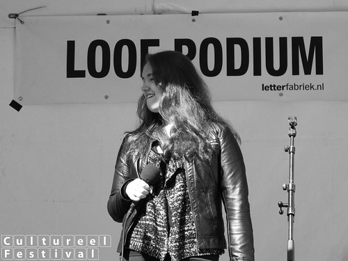 Cultureel Festival Baarn 2015 - Theaterhuis Marc van Driel