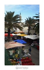 colorful Tunisia (marcel.rodrigue) Tags: photography marcel desert tunisia sidibousaid nabeul eljem mditerrane tozeur matmata themediterraneansea jkamidnorthcoast marcelrodrigue