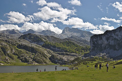 Lake Ercina (Lanzen) Tags: summer lake mountains nature water grass clouds lago agua sheep asturias grassland covadonga lagosdecovadonga aintzirak covadongako