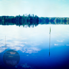 What's important, what's beautiful. (Valoisa Huone | photographer Petteri Sopanen) Tags: summer lake reflection reed water season square still quiet calm serene tranquil rm