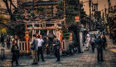Japan Kyoto . . Gion  .    DSC_7432 (Ming - chun ( very busy )) Tags: street travel light sunset japan cherry temple nikon kyoto blossom traditional 85mm scene    cherryblossom   gion nikkor f18   hdr  d800   streetshot       85mmf18   traveljapan    streetsnap streetscence  f1885mm sukura nikon85mmf18