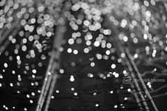 b/w challenge 260 / 365 (photos4dreams) Tags: bw white abstract black sw schwarz abstrakt weis photos4dreams photos4dreamz p4d