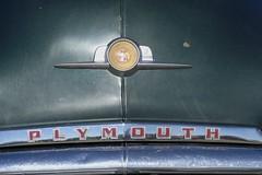 1952 Plymouth (bballchico) Tags: 1952 plymouth cranbrook donkurtzenacker arlingtondragstripreunionandcarshow arlingtoncarshow 206 washingtonstate arlingtonwashington