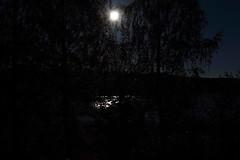Moonlight_2015_09_26_0009 (FarmerJohnn) Tags: moon lake reflection water night canon suomi finland calm september silence midnight moonlight vesi kuu y laukaa jrvi keskinen syyskuu tyyni keskiy kuutamo valkola vedenpinta hiljaisuus septembermoon lakesurface canon7d heijatus anttospohja juhanianttonen ef1635l28iiusm