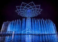 Una sera all'Expo.... (marypink) Tags: light summer water reflections evening estate expo pov milano acqua riflessi treeoflife sera notturno fontane alberodellavita expo2015 nikond800 nikkor1635mmf40