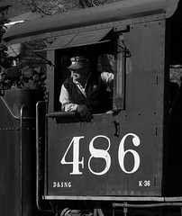 In Control (Conrail4ever) Tags: mountains train colorado silverton trains steam gauge narrow durango engineer dsng k36
