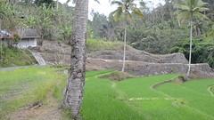 DSC_1357 (sootix) Tags: bali green temple ancient streams lush gunung pura kawi