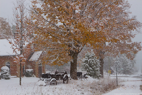 "Wagon & Yellow Tree in Heavy Snow • <a style=""font-size:0.8em;"" href=""http://www.flickr.com/photos/65051383@N05/22104354028/"" target=""_blank"">View on Flickr</a>"