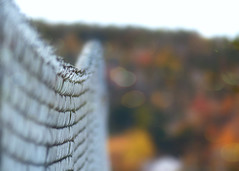 Over the Hill (nikagnew) Tags: autumn red orange fall yellow fence hill chainlink bent droop edit textured saggy ipiccy