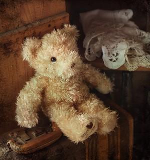 travelin' teddy