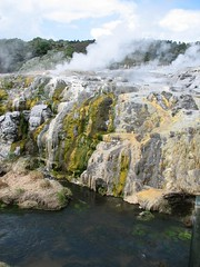 new-zealand-te-pui-thermal-reserve