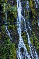 Burney Falls #8 (Califdan) Tags: california statepark park ca water landscape waterfall unitedstates motionblur northamerica westcoast burneyfalls mountainrange geolocation cascademountainrange mcarthurburneyfallssp actionmotion geo:state=california geo:country=unitedstates camera:make=canon exif:make=canon burneyfallssp exif:aperture=16 mcartherburneyfalls exif:lens=28300mm exif:model=canoneos5dmarkiii camera:model=canoneos5dmarkiii exif:isospeed=100 exif:focallength=228mm danhartfordphoto geo:city=mcarthurburneyfallsstatepark shastacascadecaregion geo:lat=41012525 geo:lon=121651405 5d0021918