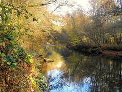 Spiegelungen der Rems (almresi1) Tags: autumn river herbst spiegelung ludwigsburg remseck rems flus