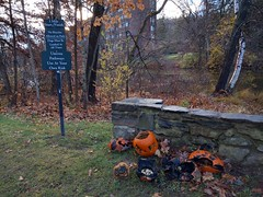 Halloween detritus (rjayroberts) Tags: halloween pumpkin jackolantern