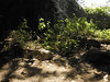 Guizhou China cave 平坝小圆厅洞 (黔中秘境) Tags: china asia caves cave 中国 caving guizhou speleo cccp 贵州 大自然 山洞 亚洲 洞 洞穴 cavem 中国洞穴 贵州洞穴