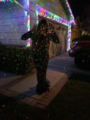 Day 346 (boxbabe86) Tags: christmas november night lights jen saturday lasers timer santaclarita iphone 2015 humantripod day346 365days 10secondtimer