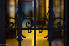Gates (Kindallas) Tags: street city roses house streets brasil avenida casa bokeh gates das paulo avenue rosas são paulista