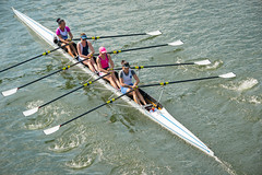 Rowing Team on the Moselle (julie m r1) Tags: rowing regatta germany ladies women competition team oars water river wet drips four pairs waves wake ripples berkastelkues sep242016