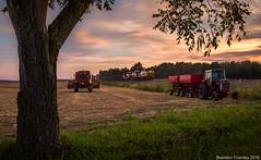 Harvest Season (Brandon Townley) Tags: trains railroad csx ns norfolksouthern ridgeton tractor combine international harvest farming sunset sky clouds