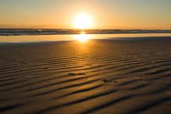 Sunrise @ NSB (sarah1026_) Tags: beach sunrise florida ocean nikon nature landscape morning dawn waves